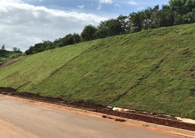 Grassing the banks at the Umhlanga/Cornubia Interchange