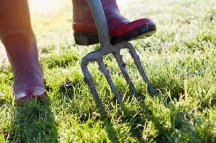 LAWN AERATION: VITAL FOR HEALTHY LAWNS