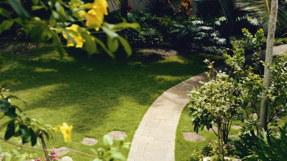 WHY YOUR LAWN ISN'T JUST ABOUT AESTHETICS