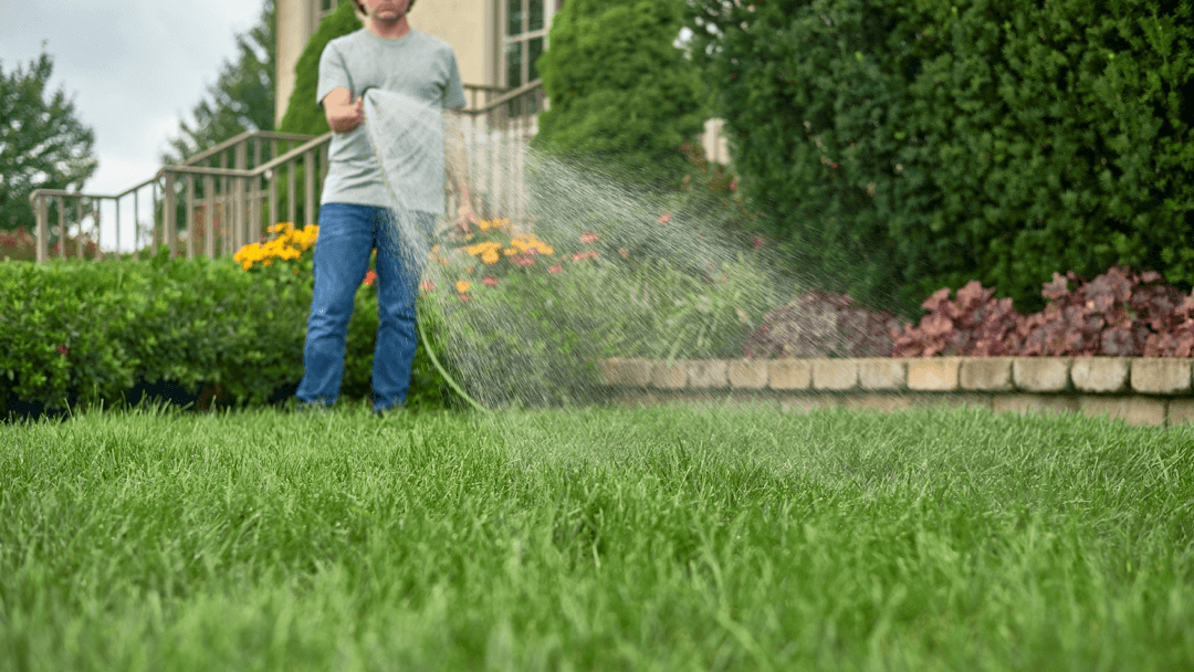 YOUR COMMONLY ASKED LAWN QUESTIONS ANSWERED